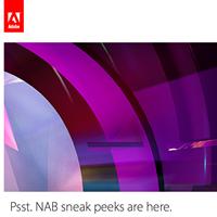 Novità Adobe per il video