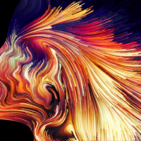 Adobe Creative Cloud 2020: creatività alla portata di tutti