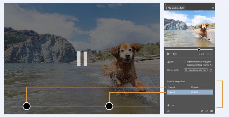 Adobe Creative Cloud 2021: le novità dell'ultima release nei corsi espero